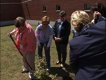 Crepe Myrtle Planted For Crime Victims