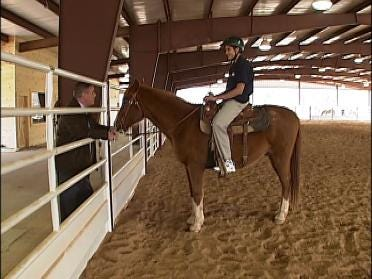 Horsing Around And Improving Lives