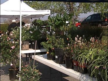 Gardenfest Helping Some Turn New Leaf