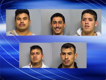 K-9 Officers Help Nab Five Robbery Suspects