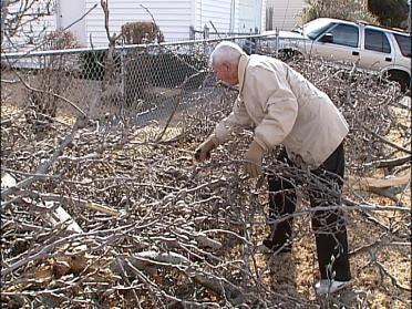 Help Dealing With Ice Storm Debris
