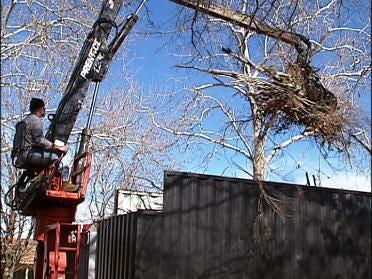 Crews Still In First Round Of Debris Removal
