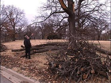 Mayor Wins Trees In Bowl Bet
