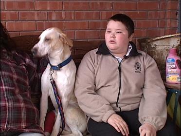 Heroic Dog In Danger Of Losing Leg