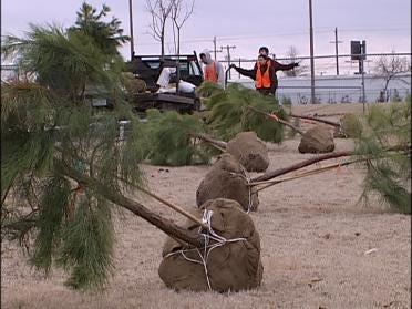 Volunteers Working To Re-Green Tulsa
