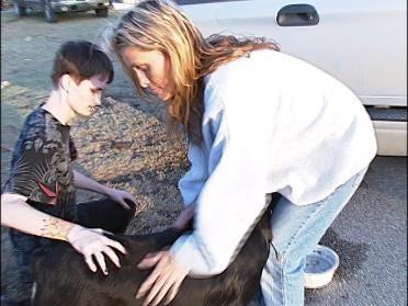Family Pet Survives Storm