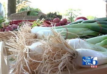 Pearl Farmers Market Opens