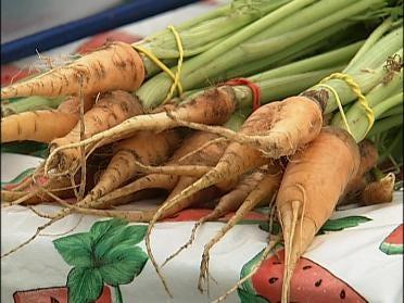 Farmers' Market Opens For The Season