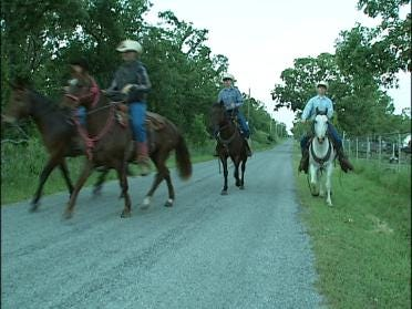 Horses Helping Students Save Money