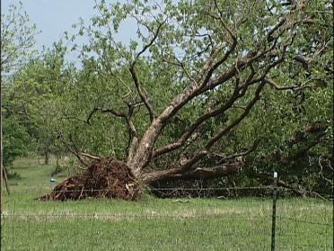 Meteorologists Take Look At Nuyaka Storm Damage