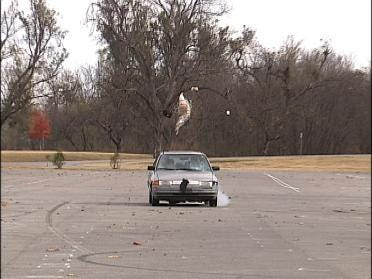 Officers Get Pedestrian Accident Training