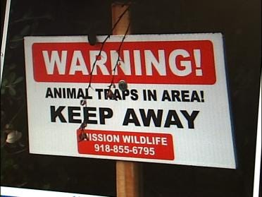 NewsOn6 Special Report: Pet Cats Trapped/Killed
