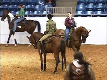 Show About More Than Horses