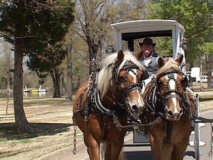 Enjoy Carriage Rides At Muskogee Azalea Festival