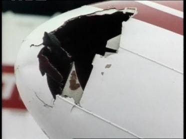 FAA: Hundreds Of Airplane Bird Strikes In Oklahoma