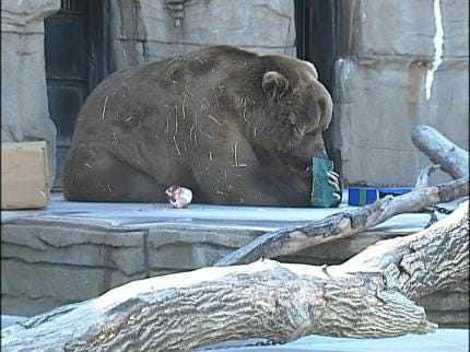 Medical Care Is Top Priority At Tulsa Zoo