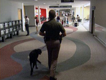 Retirement For Tulsa Airport Bomb Dog