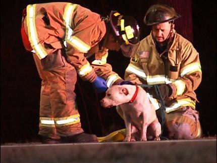 Man, Dog Hurt In Tulsa Rollover