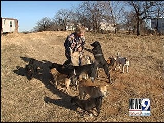 Donations Help Ardmore Woman With 100 Abandoned Dogs