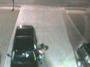 Video Of Thieves Committing Crimes Posted Online