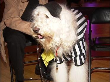 Cain's Ballroom Hosts Tulsa Dog Bowl