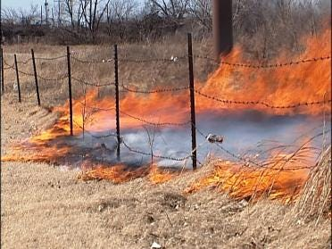 TFD Believes 11-Year-Old Started Grass Fire