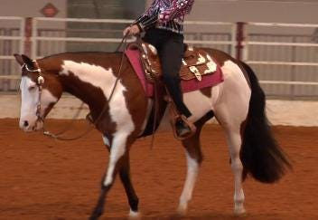 The Pinto World Championship Horse Show Gallops into Tulsa