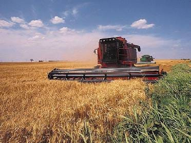 Oklahoma Wheat Crop Showing Some Positive Signs