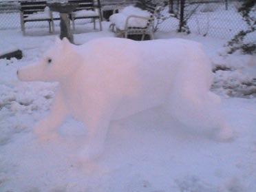 Snow Moves Into Tulsa Area