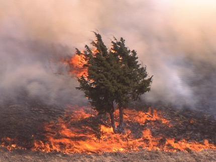 Firefighters Brace For Wildfire Season