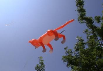 Tulsa Festival of Kites This Weekend