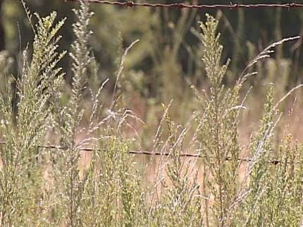 Hot, Dry Weather Triggers Burn Bans In Oklahoma