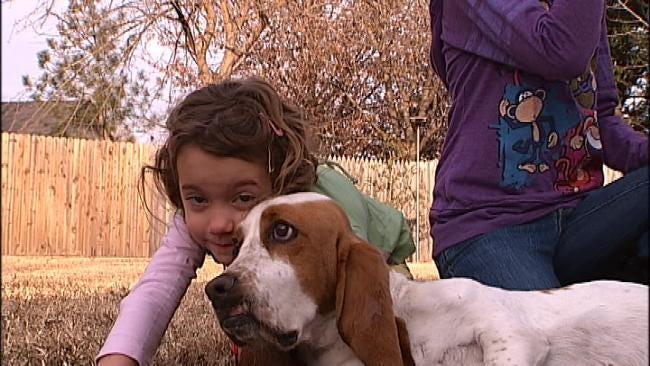 Abandoned Dog Gets Second Chance With Broken Arrow Family