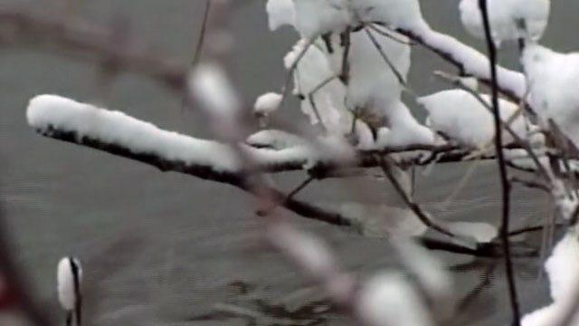 Snow Flurries In NE Oklahoma Forecast For Tuesday