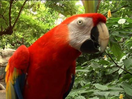 Tulsa Celebrates Zookeeper Appreciation Week