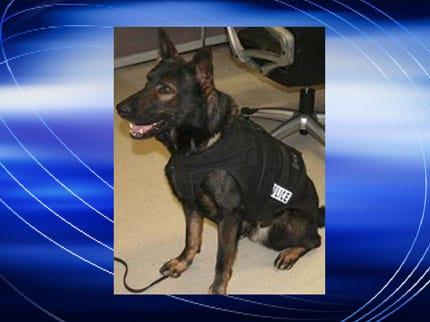 Bartlesville Police's K-9 Officer Dies