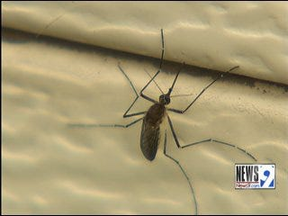 Health Officials Offer Tips to Prevent Mosquito and Tickborne Diseases