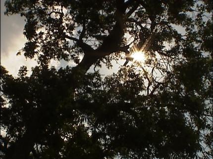 EMSA Issues Heat Alert For Tulsa Area