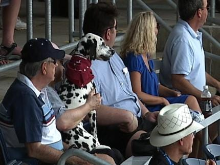 Bark In The Park Held At ONEOK Field