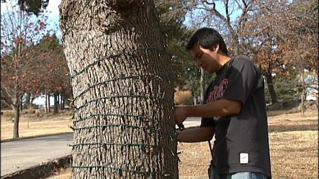 Oklahoma's Own: Final Preparations Underway At Rhema, Woolaroc For Holiday Light Display