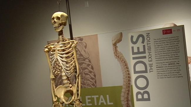 Tulsa Exhibition Gives New Perspective On The Human Body
