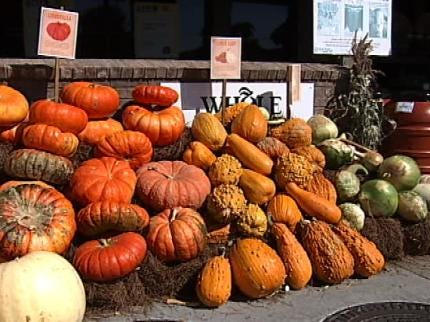 Gnarly Gourds And Strange Squash Available In Tulsa
