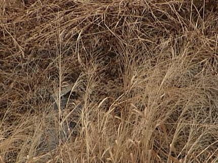 Rain Does Little To Help Oklahoma Counties Under A Burn Ban