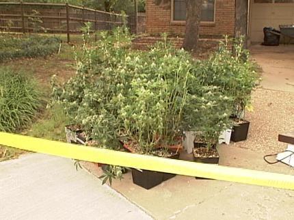Police: Nearly $80,000 Worth Of Marijuana Found In Tulsa Home