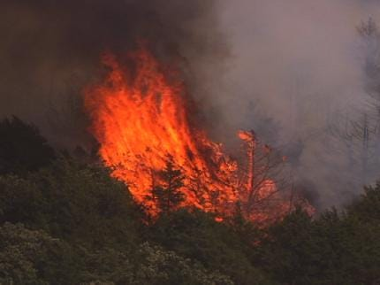 Recent Wildfires Burn Thousands Of Oklahoma Acres