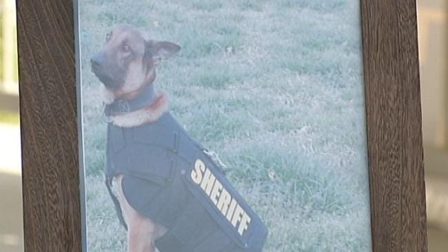 Delaware County Police Dog Remembered For Service, Sacrifice