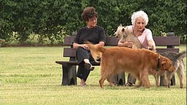 Tulsa City Council Pushes Dog Park Etiquette