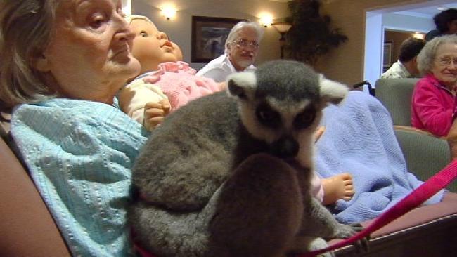 Broken Arrow Safari Brings Exotic Animals To Senior Center