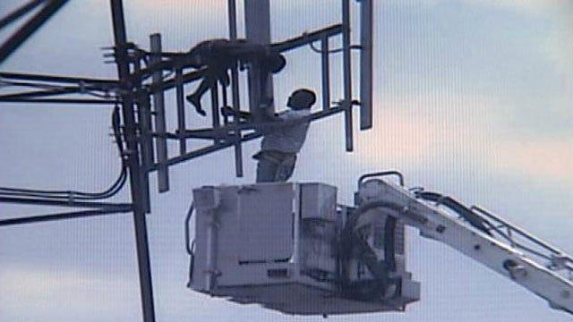 Former Boss Describes Man In Tulsa Tower Standoff As 'Normal Guy'