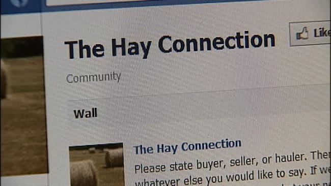 Oklahoma 'Hay Connection' Benefits Buyers And Sellers